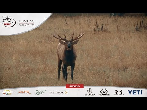 Hunting Is Conservation - Countering The Argument: Hunting Threatens Wildlife