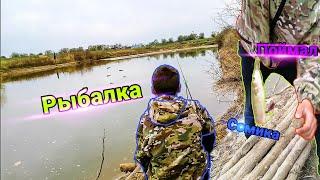 Рыбалка на донку на реке Егорлык поймал сомика