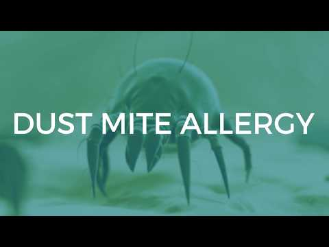 dust-mite-allergy:-symptoms-and-treatments