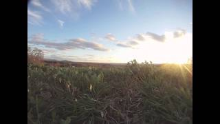 spring time lapse