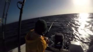 Pescando dorado la parguera PR/ fishing mahi mahi off the coast of parguera