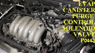 How to Test and Replace EVAP Canister Purge Control SOLENOID Valve P0443