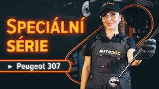 Video instrukce pro PEUGEOT 307