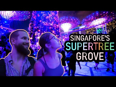 Singapore's Futuristic SUPERTREE GROVE - Gardens By The Bay