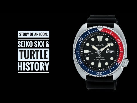 Story of an Icon: Seiko SKX & Turtle Dive Watches   Armand The Watch Guy