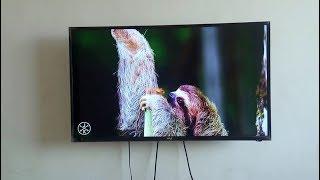 Vu50D6535 Full HD (49-inch) Cheap LED TV