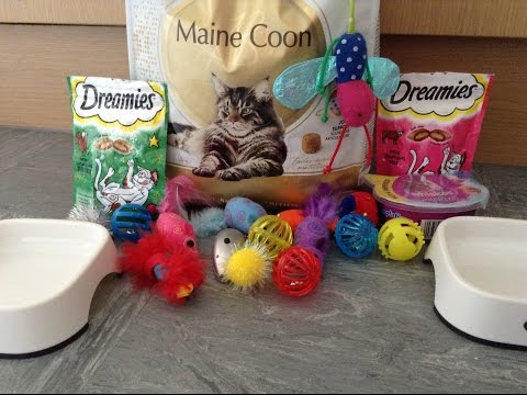 All My Cat Supplies ~Isabelle~