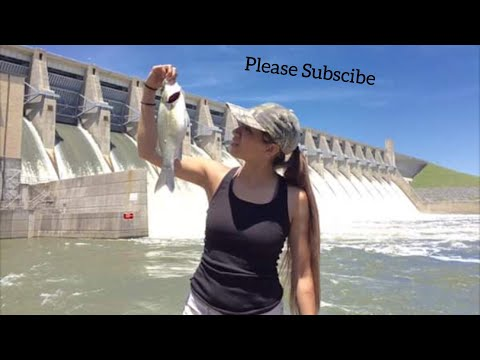Stripers At Lake Whitney Dam