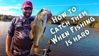 When the Fishing is Tough - How to Fish