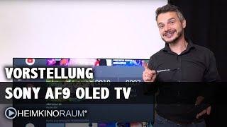 Sony AF9 OLED Test / Vorstellung 65 Zoll Android TV