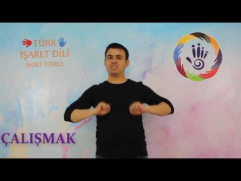 Türk İşaret Dili İle Fiilerin Gösterimi