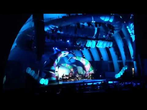 Animal Collective - Hollywood Bowl