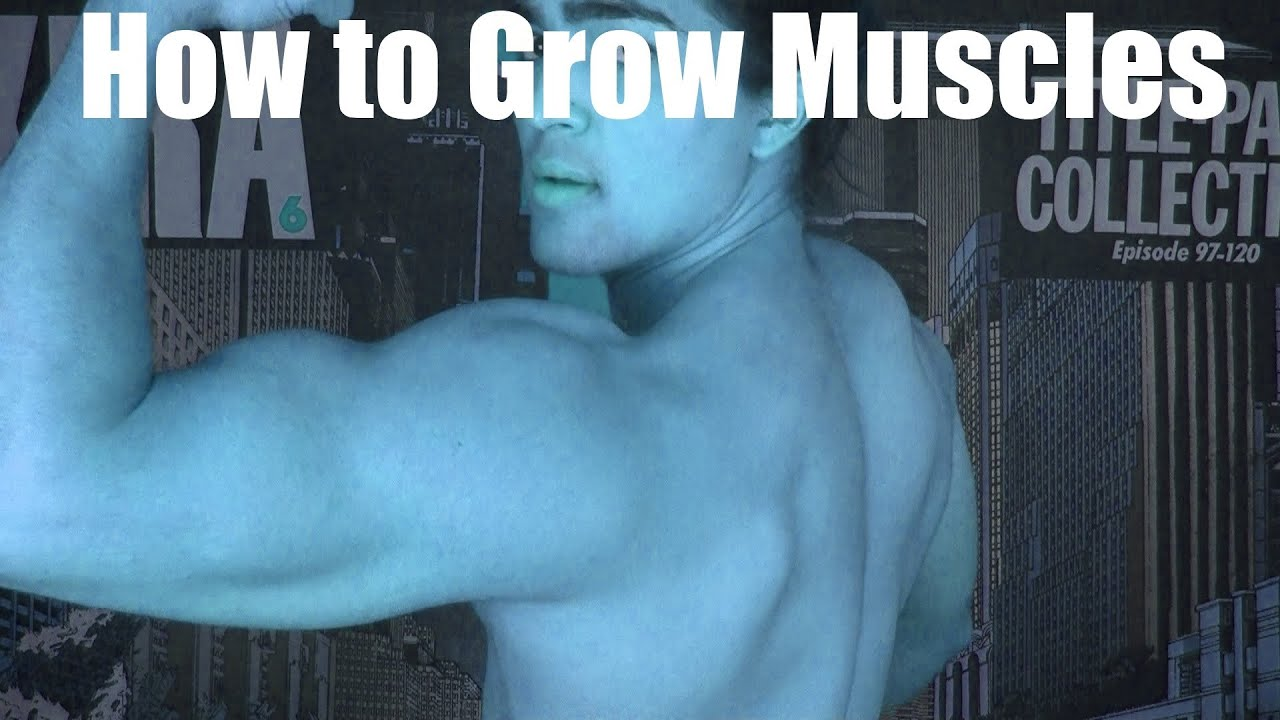 how to grow (hypertrophy) a muscle: genetics, isolation training, Muscles