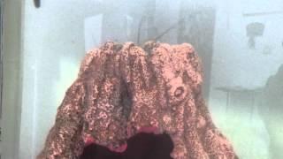 video-2012-06-13-16-29-36.mp4