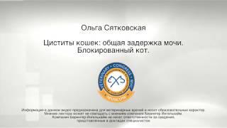Ольга Сятковская - Циститы кошек: общая задержка мочи. Блокированный кот.