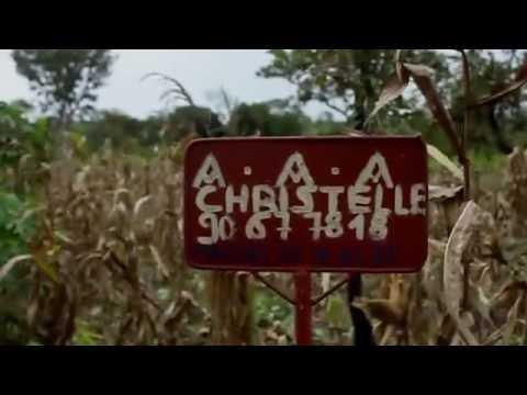 Transforming the Cameroon economy with Microsoft Dynamics NAV & SaaSplaza