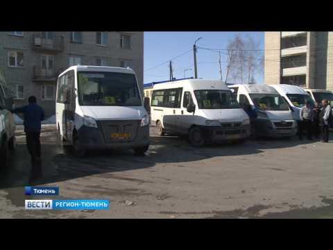 На треть снизилось число нарушений ПДД водителями автобусов в Тюмени