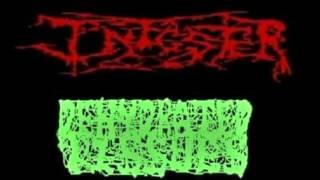 Dehydrated Tissues - Cadaveric Innard Sodomizer