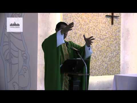 Homilia Pbro  Tomás Guerrero LC Rgnum Christi sep 2015