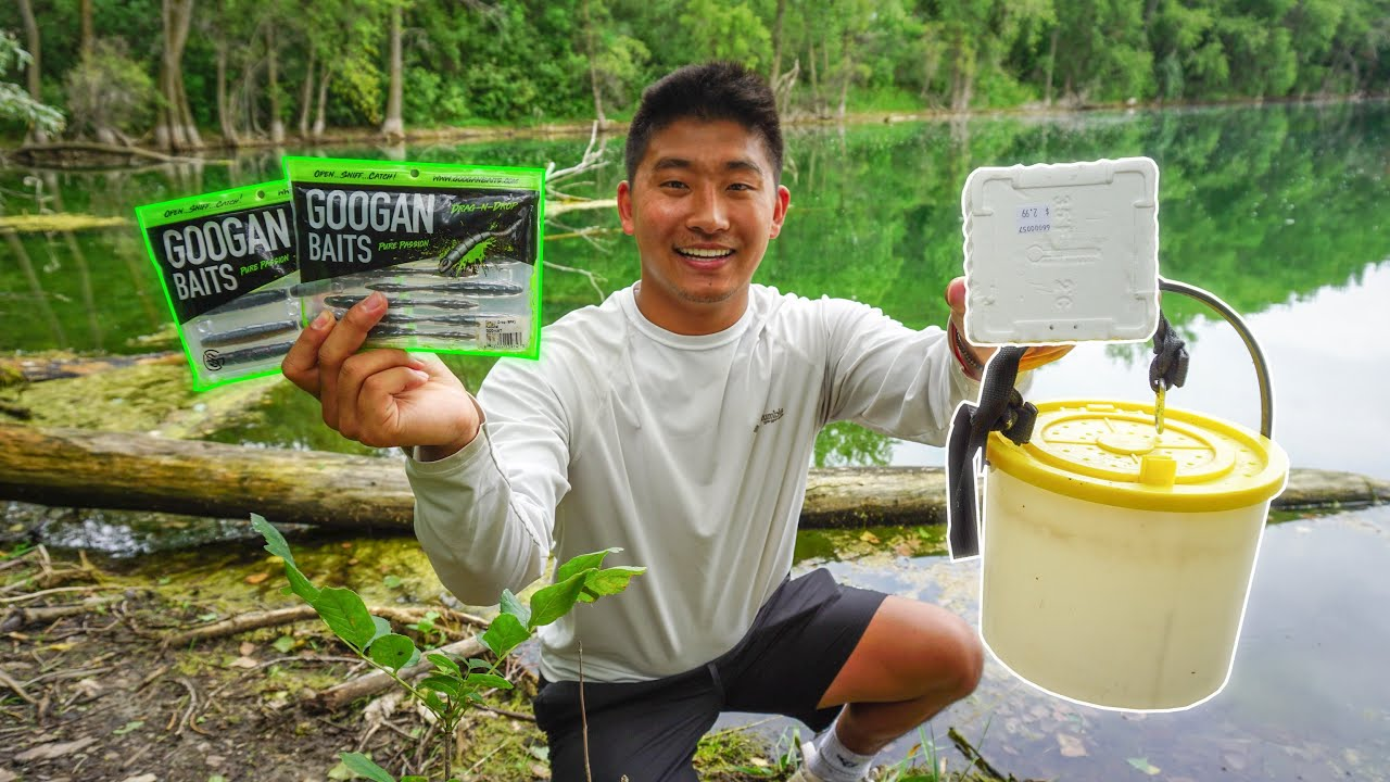 LIVE BAIT vs ARTIFICIAL LURE Fishing Challenge! (Which is better?)