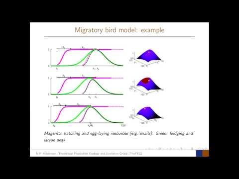 Lightning Talk: Migratory Bird Phenology