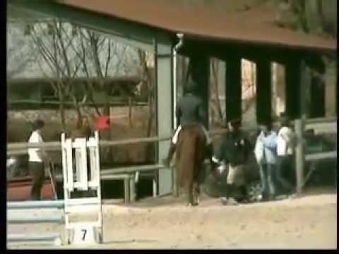Concours de CSO de Saint Affrique des cavaliers de la vallée du rance
