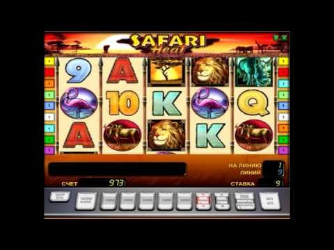 Обзор игрового аппарата  Сердце сафари (safari Heat) - правила и характеристики