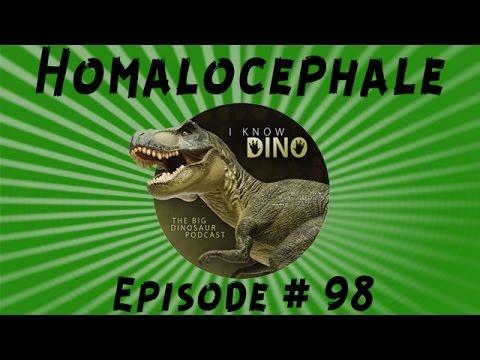 Homalocephale: I Know Dino Podcast Episode 98