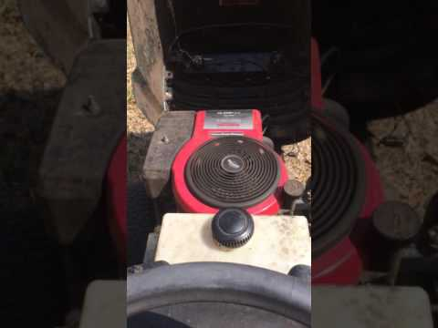 briggs and stratton runs for a few minutes then dies. Help please?