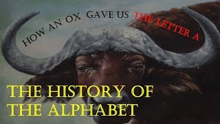 How an Ox Gave Us the Letter A: The History of the Alphabet