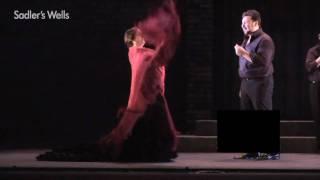 Ballet Flamenca Eva Yerbabuena - Lluvia