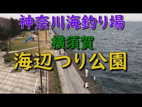 神奈川釣り場 横須賀海辺つり公園 SPOT MANCING UMIBE FISHING PARK YOKOSUKA