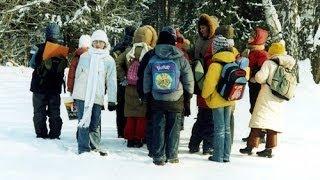 Лесные уроки в начальной школе. Природа зимой