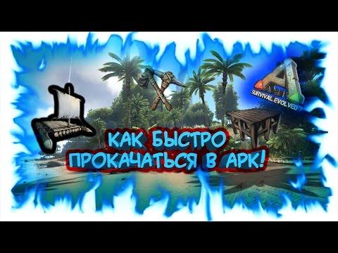 ARK: Survival Evolved - Гайд по начальной прокачке!
