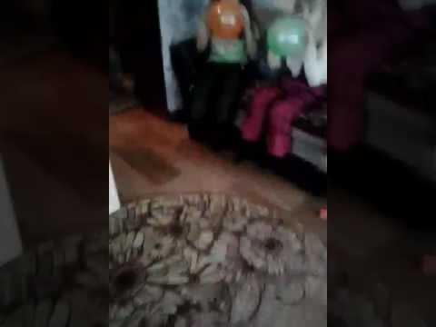Кошки и шарики смотреть видео прикол - 2:52