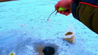 ПЕРВЫЙ ШТРАФ 2020 ТОЛЬКО ОТПУСТИЛ МОРМЫШКУ СРАЗУ УДАРЫ  рыбалка зимой