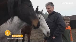 Добрий ранок, Україно! лошади