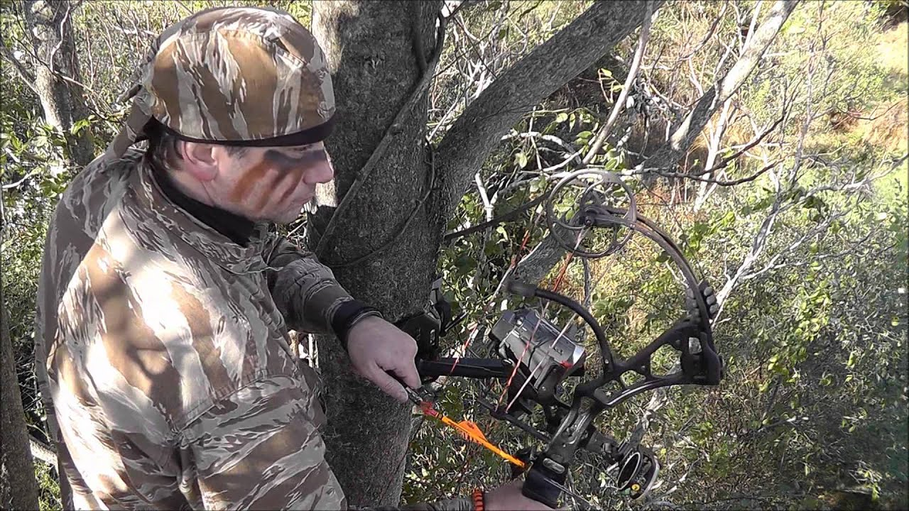 BOWHUNTING: THE PERFECT HEART SHOT!