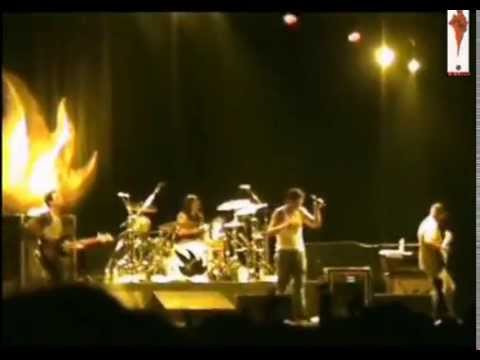 Audioslave - Man or Animal [Live]