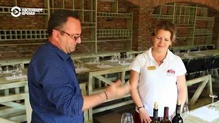 Ртвели — праздник вина и гостей | ЖДЁМ В ГОСТИ