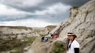 Bonebed 30 Guided Excavation Program at Dinosaur Provincial Park