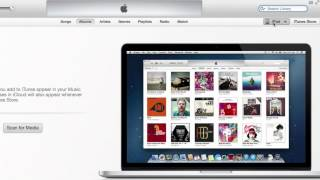 How to Connect to Mac OS X With an iPad : Apple & iOS Madness!