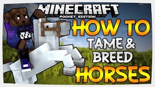 (0.15.0) How To Tame/Breed Horses, Donkeys, & Mules | Minecraft PE