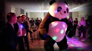 Шоу-программа на свадьбу Панда