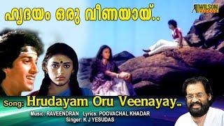 Hridayam Oru Veenayaay Malayalam Full Video Song   HD    Thammil Thammil Movie Song