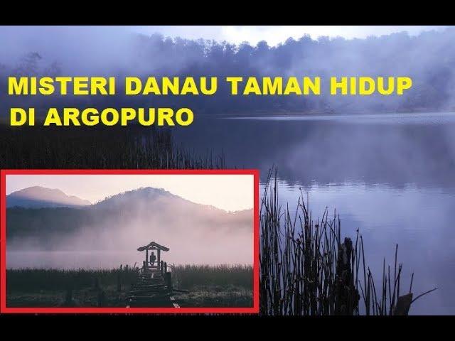 Misteri Danau Taman Hidup Di Pegunungan Argopuro Youtube