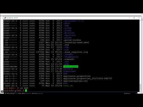 Linux コマンド チュートリアル