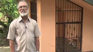 Animal Birth Control (ABC) Kerala -Early Neutering in Dogs ( END)-Malayalam video