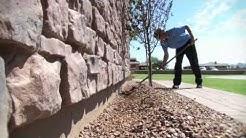 Altriset: The Best Termite Control Solution | Arizona Best Choice Pest & Termite Services