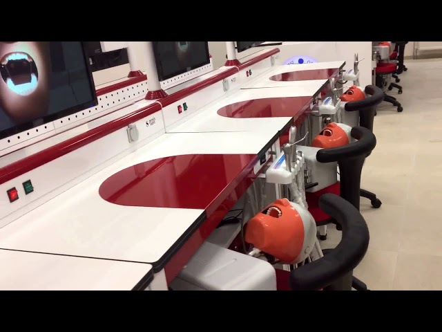 Ordu Üniversitesi Diş Hekimliği Fakültesi Fantom Laboratuvarı Çalışmamız
